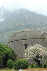 Kotor Wall