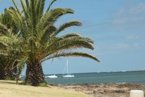 Beach at Punta del Estes