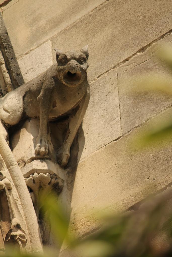 Gargoyal at Notre Dame