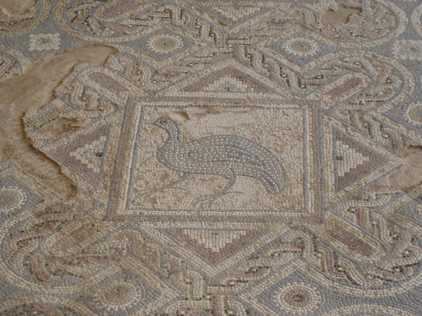 Peacock mosaic floor in Roman house