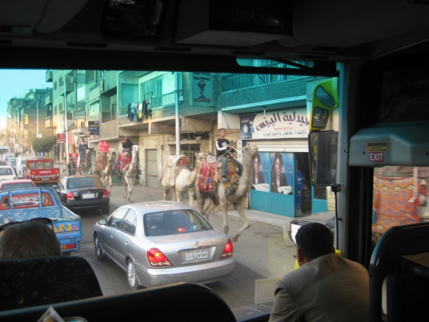 Navigating the streets of Cairo