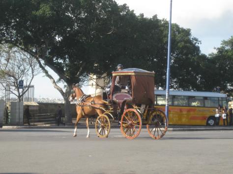 Many modes of transportation