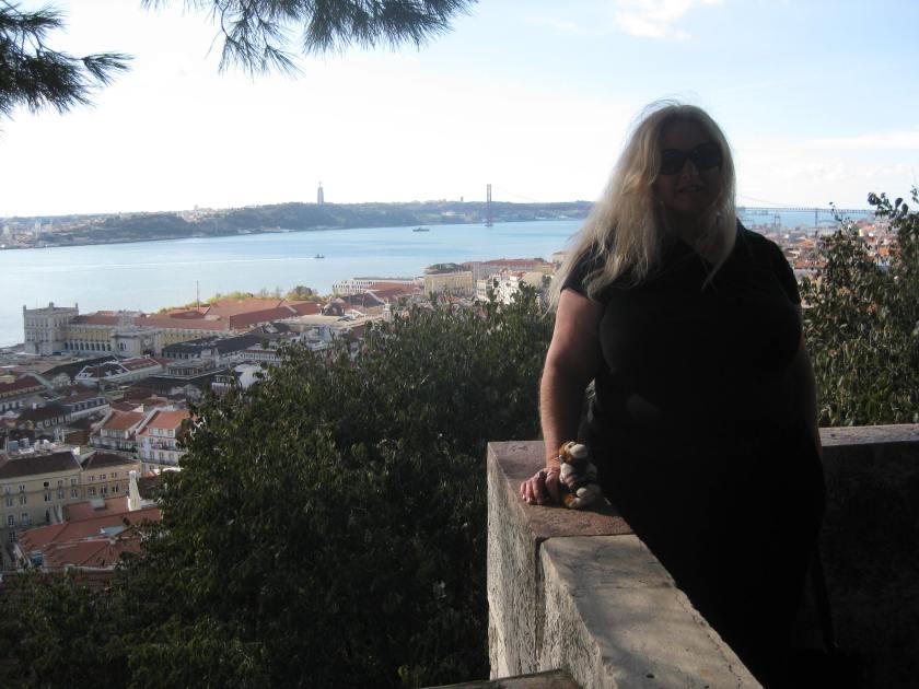 View from the Castelo de Sao Jorge