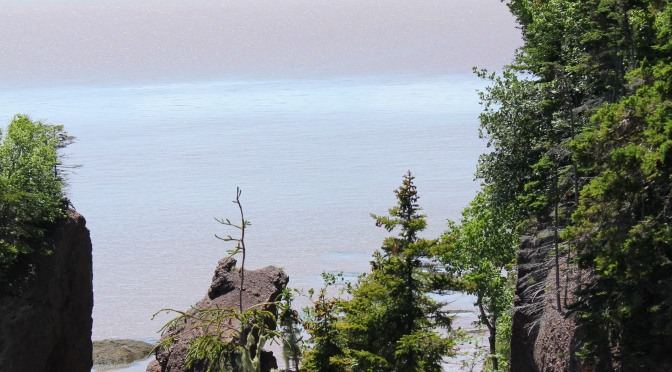 H is for Hopewell Rocks